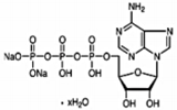 アデノシンリン酸二ナトリウム